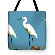Pop Egrets Tote Bag