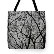Popcorn Tree Budding Tote Bag