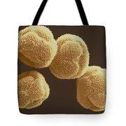 Poplar Pollen Sem Tote Bag