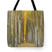 Poplar Tree Farm In Boardman Oregon In Fall Closeup Tote Bag