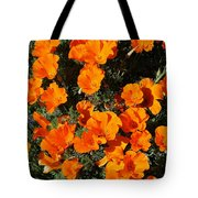 Poppies Alive Tote Bag