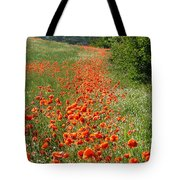 Poppies Awash Tote Bag