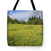 Poppies Forever Tote Bag