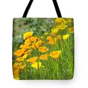 Poppies Hillside Meadow Landscape 19 Poppy Flowers Art Prints Baslee Troutman Tote Bag
