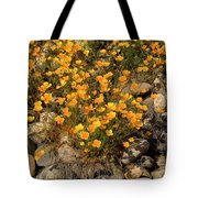 Poppies On The Rocks Tote Bag