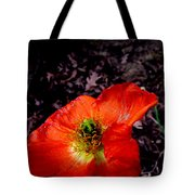 Poppy At Dusk Tote Bag