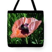 Poppy Beautiful Tote Bag