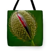 Poppy Bud Tote Bag