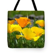 Poppy Flower Meadow 14 Poppies Orange Flowers Giclee Art Prints Baslee Troutman Tote Bag