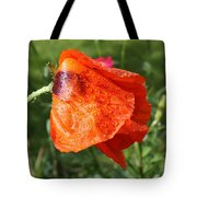 Red Poppy II Tote Bag