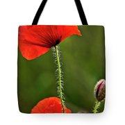 Poppy Image Tote Bag