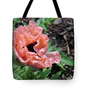 Poppy Opening Tote Bag