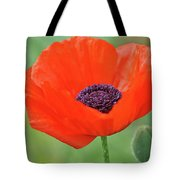 Poppy Red Tote Bag