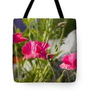 Poppy Trio Tote Bag