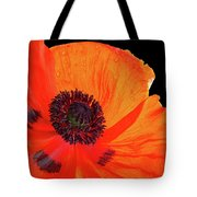Poppy With Raindrops 3 Tote Bag