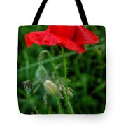 Poppy's Course Of Life Tote Bag