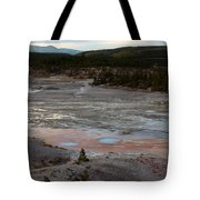 Porcelain Basin #2 Tote Bag