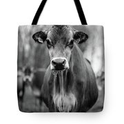 Portrait Of A Dairy Cow In The Rain Stowe Vermont Tote Bag