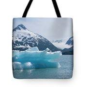 Porter Glacier Alaska II Tote Bag