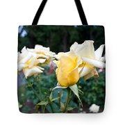 Portland Roses #3 Tote Bag