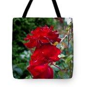 Portland Roses #6 Tote Bag
