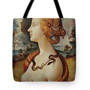 Portrait De Femme Dit De Simonetta Vespucci Tote Bag