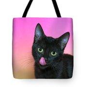 Portrait Hungry Black Kitten Tote Bag