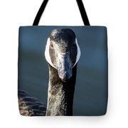 Portrait Of A Canada Goose Tote Bag