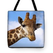 Portrait Of A Giraffe On The Background Of Blue Sky. Tote Bag