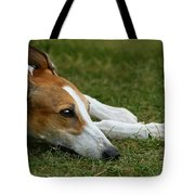 Portrait Of A Greyhound - Soulful Tote Bag