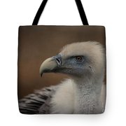 Portrait Of A Griffon Vulture Tote Bag