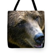 Portrait Of A Grizzly Tote Bag