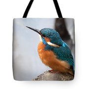 Portrait Of A Kingfisher Tote Bag