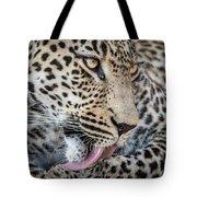 Portrait Of A Leopard Tote Bag
