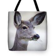 Portrait Of A Mule Deer Tote Bag