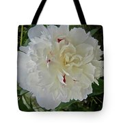 Portrait Of A Peony Tote Bag
