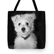 Portrait Of A Puppy In Black And White Tote Bag