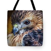 Portrait Of A Red-tailed Hawk Tote Bag