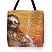 Portrait Of A Sloth Pet Looking In The Camera Tote Bag
