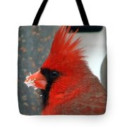 Portrait Of A Snowy Cardinal Tote Bag