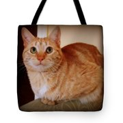 Portrait Of A Tabby Tote Bag