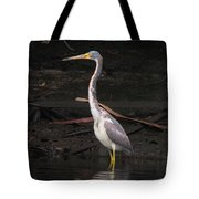 Portrait Of A Tri-colored Heron Tote Bag