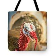Portrait Of A Wild Turkey Tote Bag