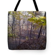Portrait Of America - Hidden Love Tote Bag