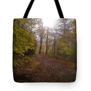 Portrait Of America - Light Tote Bag
