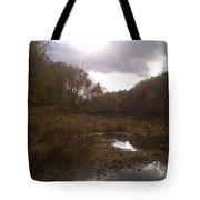Portrait Of America - Lost Dream Tote Bag