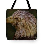 Portrait Of An Eagle Tote Bag