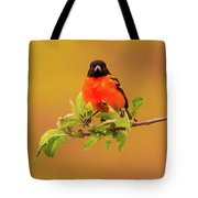 Portrait Of An Oriole Tote Bag