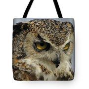 Portrait Of An Owl.  Tote Bag