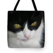 Portrait Of Flopsy Tote Bag